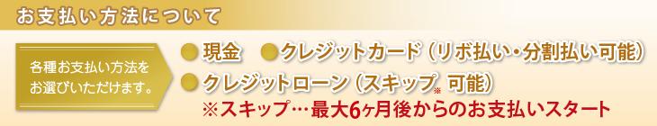 この画像には alt 属性が指定されておらず、ファイル名は shiharai_rinrin.png です
